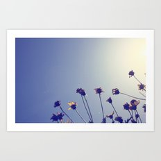 Marvelous Things Art Print