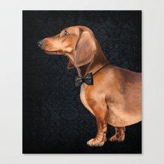 Elegant dachshund. Canvas Print