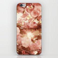 Cherry Blossom Sky iPhone & iPod Skin