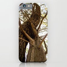 An intermarriage of sorts iPhone 6 Slim Case