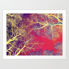 The Fairy Forest #2 Art Print
