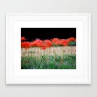 spider lillies Framed Art Print