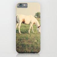 It's not a unicorn! It's a white horse! iPhone 6 Slim Case