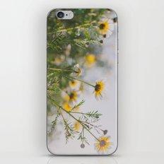 Under the light iPhone & iPod Skin