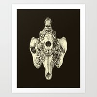 Coyote Skulls - Black and White Art Print