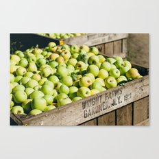 Bushel of Apples Canvas Print
