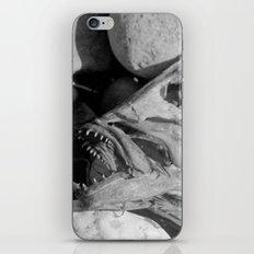 Fish head iPhone & iPod Skin