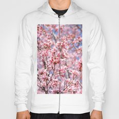 Cherry Blossom Blooms for Spring Hoody