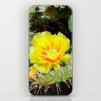 Prickly Yellow Beauty iPhone & iPod Skin
