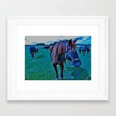 feed the horse Framed Art Print
