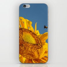 Mr. Yellow Britches iPhone & iPod Skin