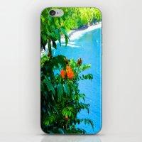 Hawaii iPhone & iPod Skin