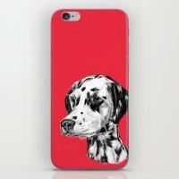 Dalmatian Red  iPhone & iPod Skin