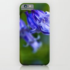 Bluebell Stem iPhone 6 Slim Case
