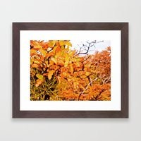 Other orange intense. Framed Art Print