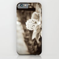 iPhone & iPod Case featuring Little Friend by Joëlle Tahindro