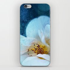 Midnight Magic iPhone & iPod Skin