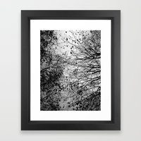 Branches & Leaves Framed Art Print