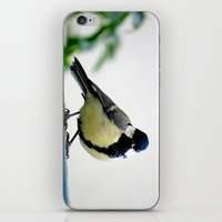 MM - Chikadee iPhone & iPod Skin