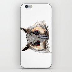 Long Eared Owl iPhone & iPod Skin