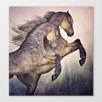 Two Stallions Canvas Print