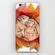 Squirrel Spoon iPhone & iPod Skin