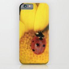 Ladybug on yellow flower - macro still life - fine art photo for interior decor Slim Case iPhone 6s