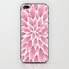 Petal Burst #10 iPhone & iPod Skin