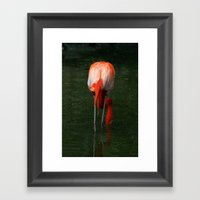 Shrimping Framed Art Print
