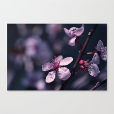Disappearing Canvas Print