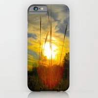 iPhone & iPod Case featuring Rise by a.rose