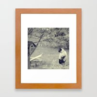 Sitting, Waiting, Wishing Framed Art Print