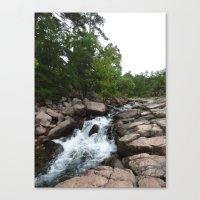 Waterfall 2015 Canvas Print