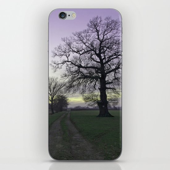 evening light... iPhone & iPod Skin
