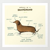 Anatomy of a Dachshund Art Print