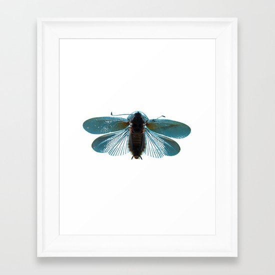Blue Moth Framed Art Print