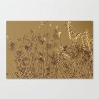 Thin Branches Sepia Canvas Print