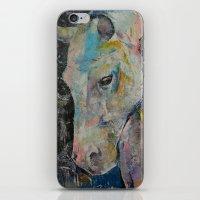 Hidden Heart Horse iPhone & iPod Skin