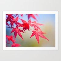 Spring Maple Tree 1012 Art Print