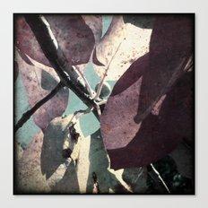 Beautiful Leaves Canvas Print