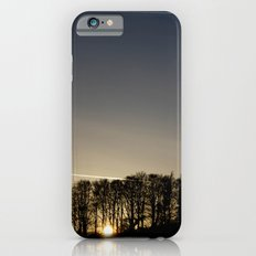 Trees iPhone 6 Slim Case