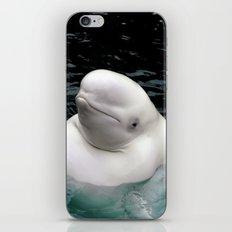 Beluga Whale iPhone & iPod Skin