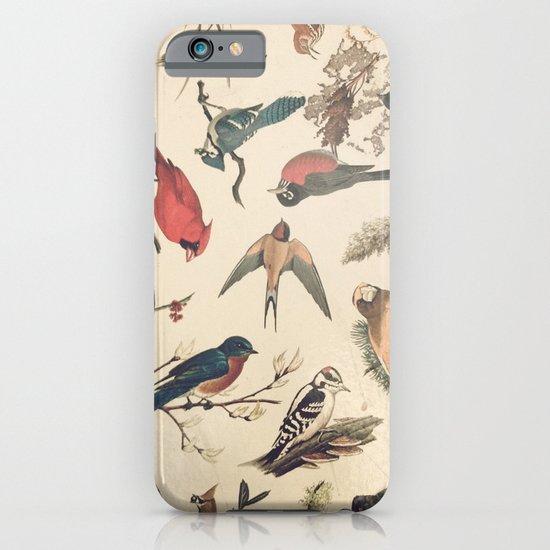Vintage Songbirds iPhone & iPod Case