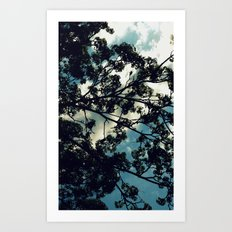 Against a Billow Cloud Art Print