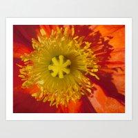 7G Yellow Heart Orange Sun 7 Art Print