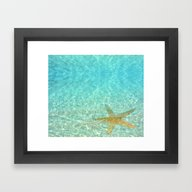 Sea Treasures Framed Art Print