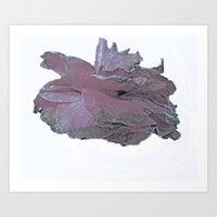 Camellia Side Art Print