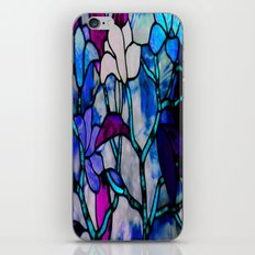 Painted Glass iPhone & iPod Skin