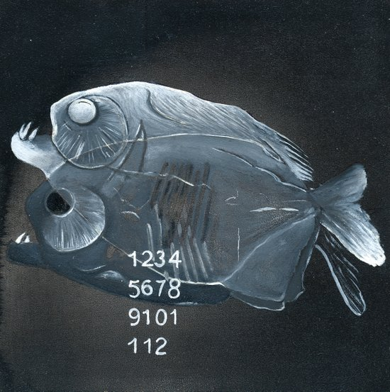 Piranha Paradox  Canvas Print