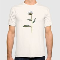 Peonies Winter Mist Mens Fitted Tee Natural SMALL